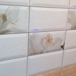 Коллекция Tula CeramicAlcora 10х20 см